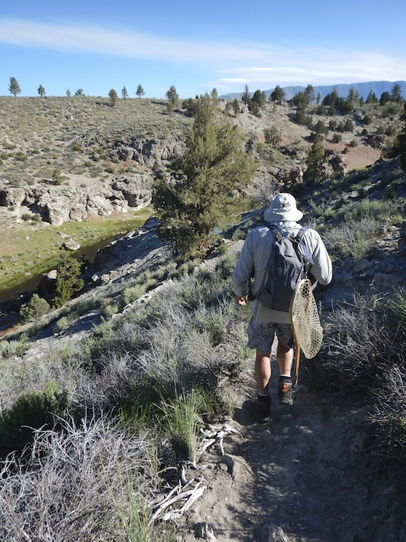 When Hot Creek drops into a canyon, it's a steep walk to the water. (Photo: Tom Adkinson)